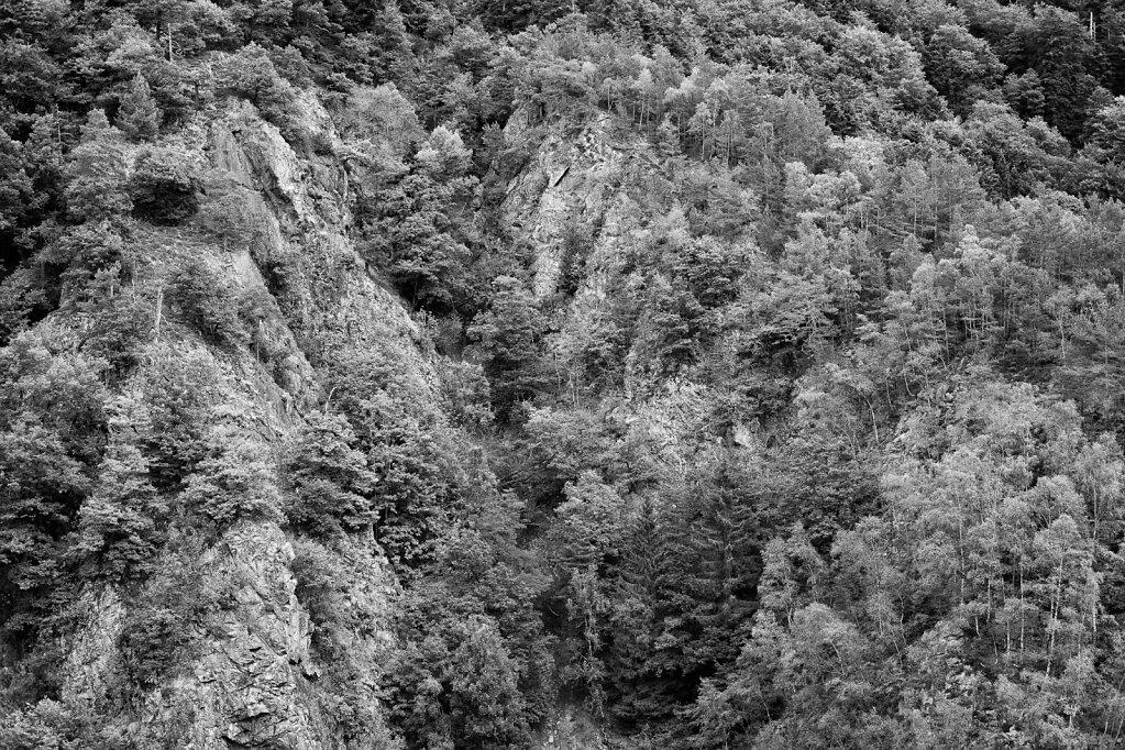 Schwarzwald 33